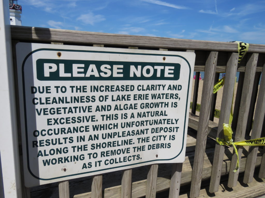 The U.S. EPA is granting $215,000 for Ohio to warn the public about dangers at beaches. (Laura Johnston, RocktheLake)
