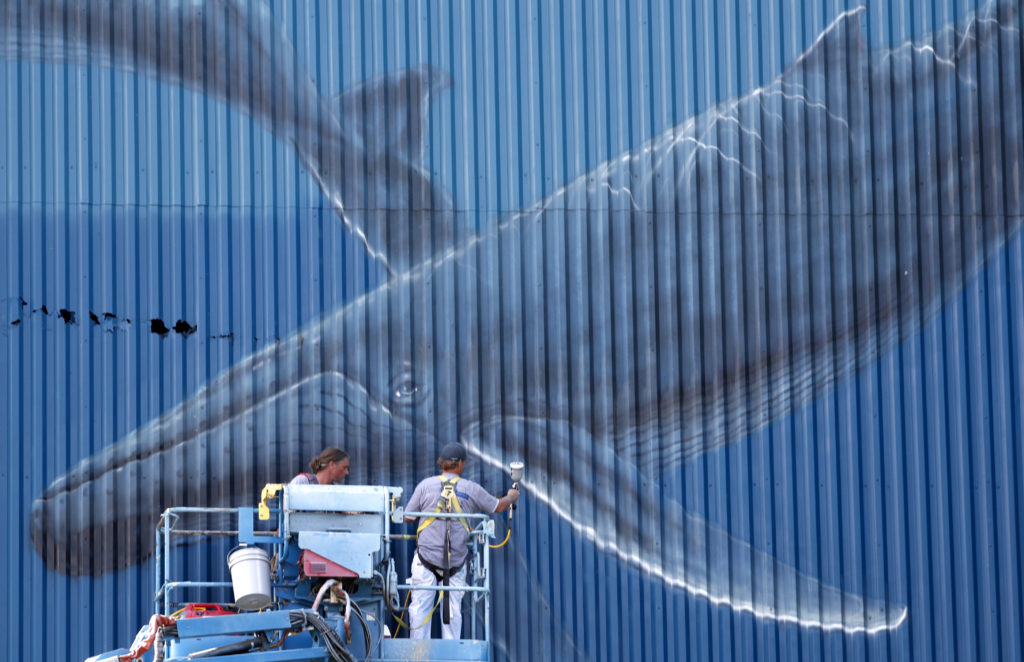 The artist Wyland paints his whale mural on the east facing wall at the Cleveland Public Power Plant.  Wyland hopes to be finished with the mural for a scheduled Friday re-dedication ceremony with the city.  October 3, 2019  (Gus Chan / The Plain Dealer)